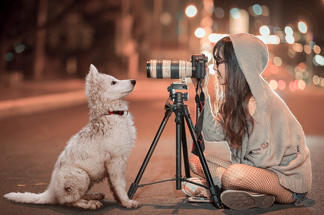 愛犬も喜ぶウォータースタンドの特徴とは?愛犬家に人気の理由がわかる!