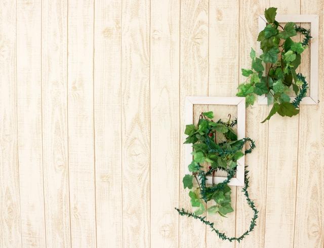 待合室の壁にある植物