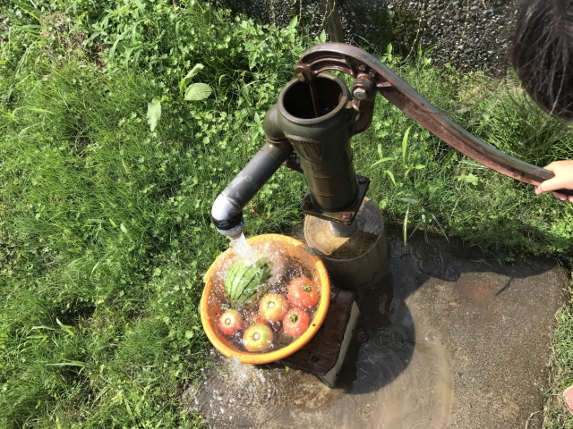 塩素殺菌されていないお水は危険!?ピロリ菌感染してしまうの?